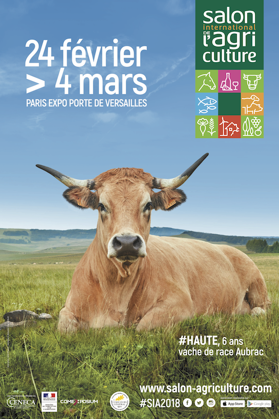 Haute une vache aubrac g rie du salon international de for Salon de l agriculture porte m